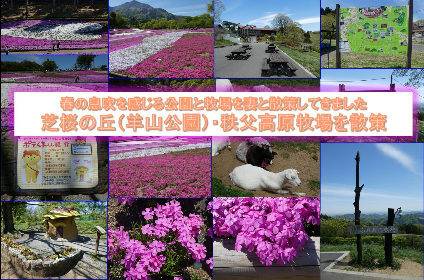 21_04_22_芝桜の丘(羊山公園)・秩父高原牧場散策_AA